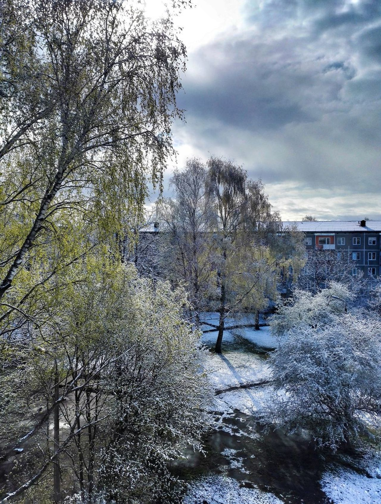 10th of May 2017 in Riga. Cloud - Sky Sky Nature Day Outdoors Tree Beauty In Nature Sky_collection City Snow Springtime Trees