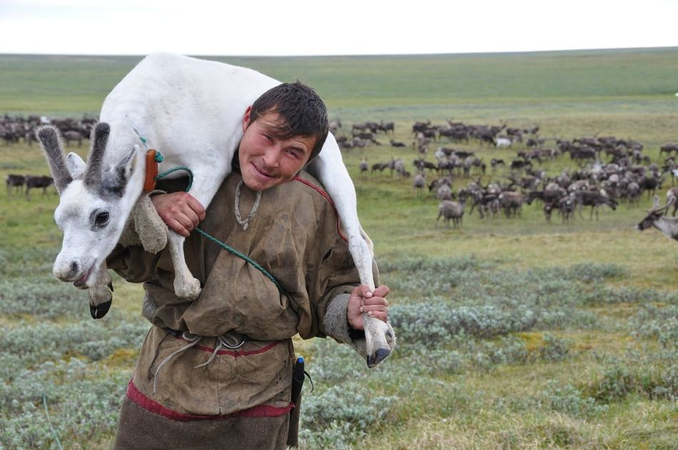Beautiful stock photos of hirsch, only women, domestic animals, livestock, one woman only