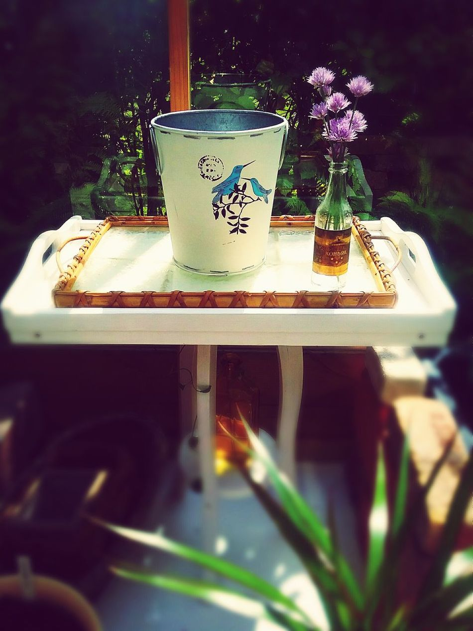 The Essence Of Summer Atmospheric Summertime Details Decor Tray Old Bottle Flowers Greenhouse Rattan Light And Shadow Sunny Day Blue Birds Tin Glass Materials Wooden Table No People Showcase June