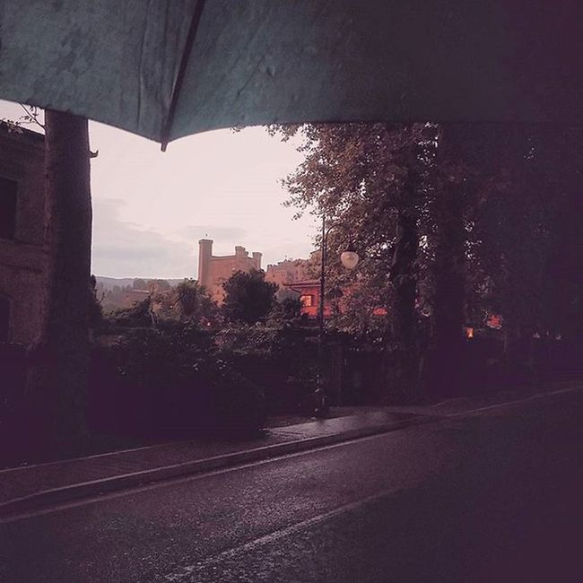 Mete Bolsena Bolsenalake Umbria Viterbo Landscape Visittuscia Visitbolsena Instanature Natura Instavacation Etruria Estestest Paesaggio Tusciafotografia Tuscania Tramonto Sunset Igerslazio Igersoftheday Igersbolsena Colori Pioggia Umbrella Rain Igersumbria vivolazio summer streetlife streetphotography vsco