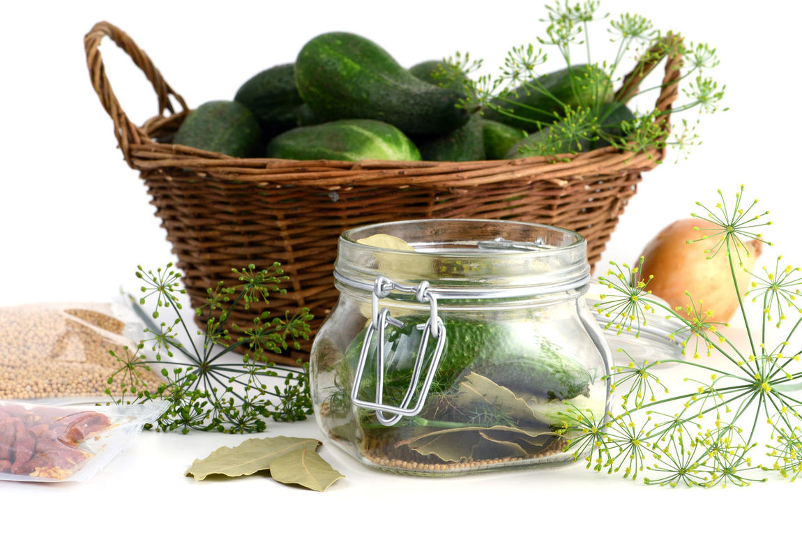 homemade cucumbers in jar glass with herbs like dill, laurel leaves, chili peper and onions. Food Food And Drink Vegetable Lorbeer Cucumbersalad Cucumbers Saure Gurken White Background Studio Shot Dill Herbs Einweckglas Glass Jar Isolated Cucumber Onions Onion Isolated White Background Chili