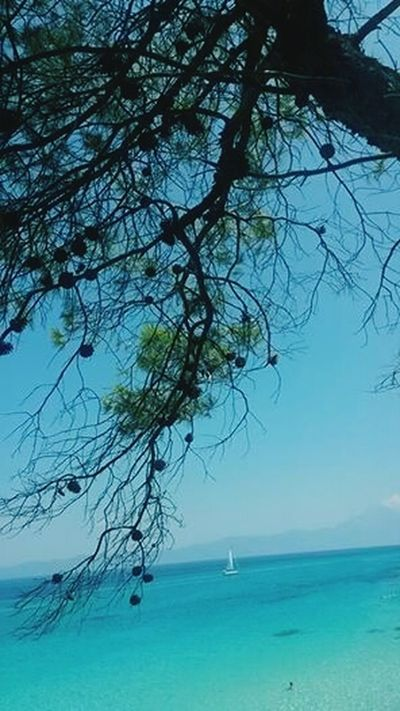 Hello World Xalkidiki Greece Kavourotripes Natural Beauty <3