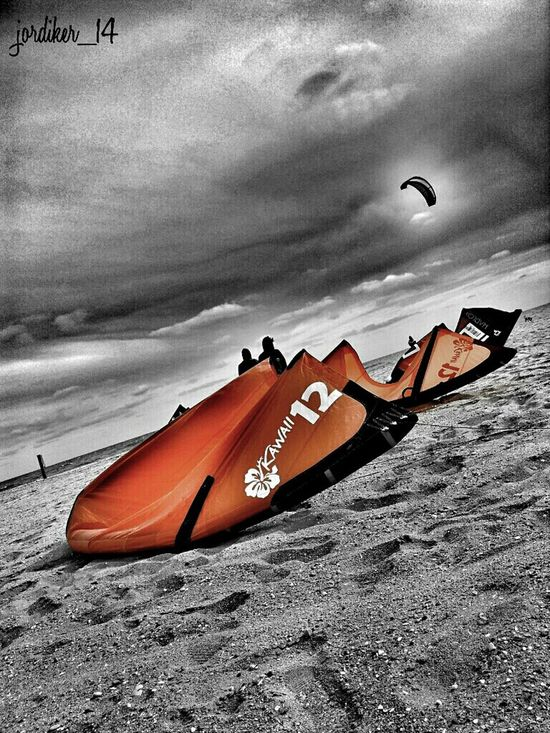 Surfing Colorsplash Skateboarding Kitesurfing