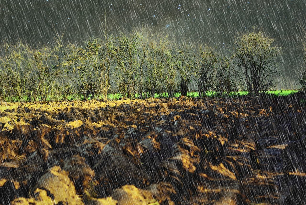 Plowed Field Rainy Day Febuary Blues in the country Outdoors No People