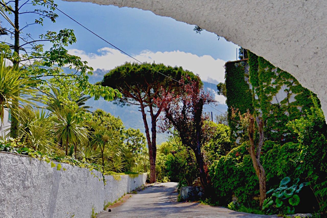 Bella Italia Tree Growth Nature Sunlight Architecture Scenics Outdoors Day Beauty In Nature No People Sky Mountain Nature_collection Eyem Best Shots EyeEm Nature Lover Eyem Nature Lovers  EyeEm Gallery Eye4photography