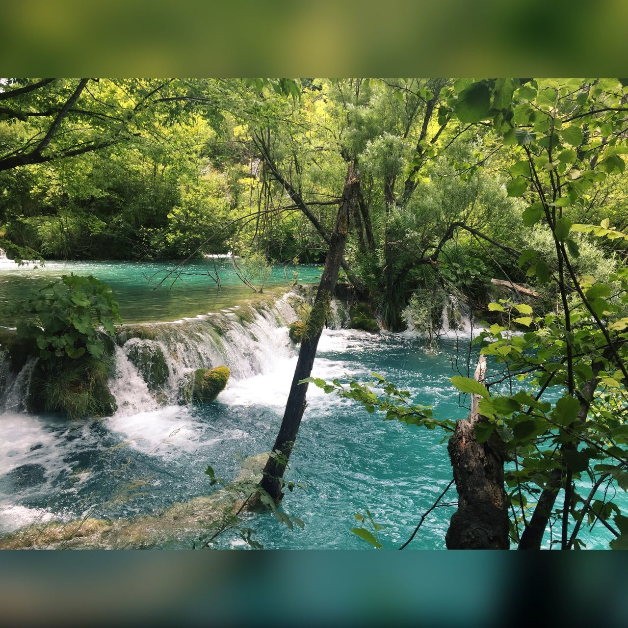 Water Nature Beauty In Nature Tree Waterfall No People Day Outdoors River Forest Green Color Motion Freshness Travel Destinations Mxndmxdchen03 Green Color No Filter Blue Color