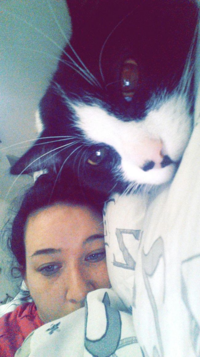 me and Stan are very tired today Bedhead Morning Everyone :)
