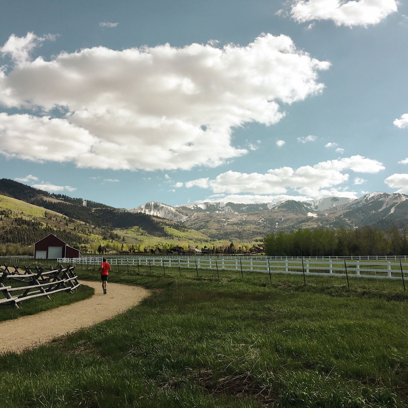 running in between the farms tonight after work. Park City, Utah