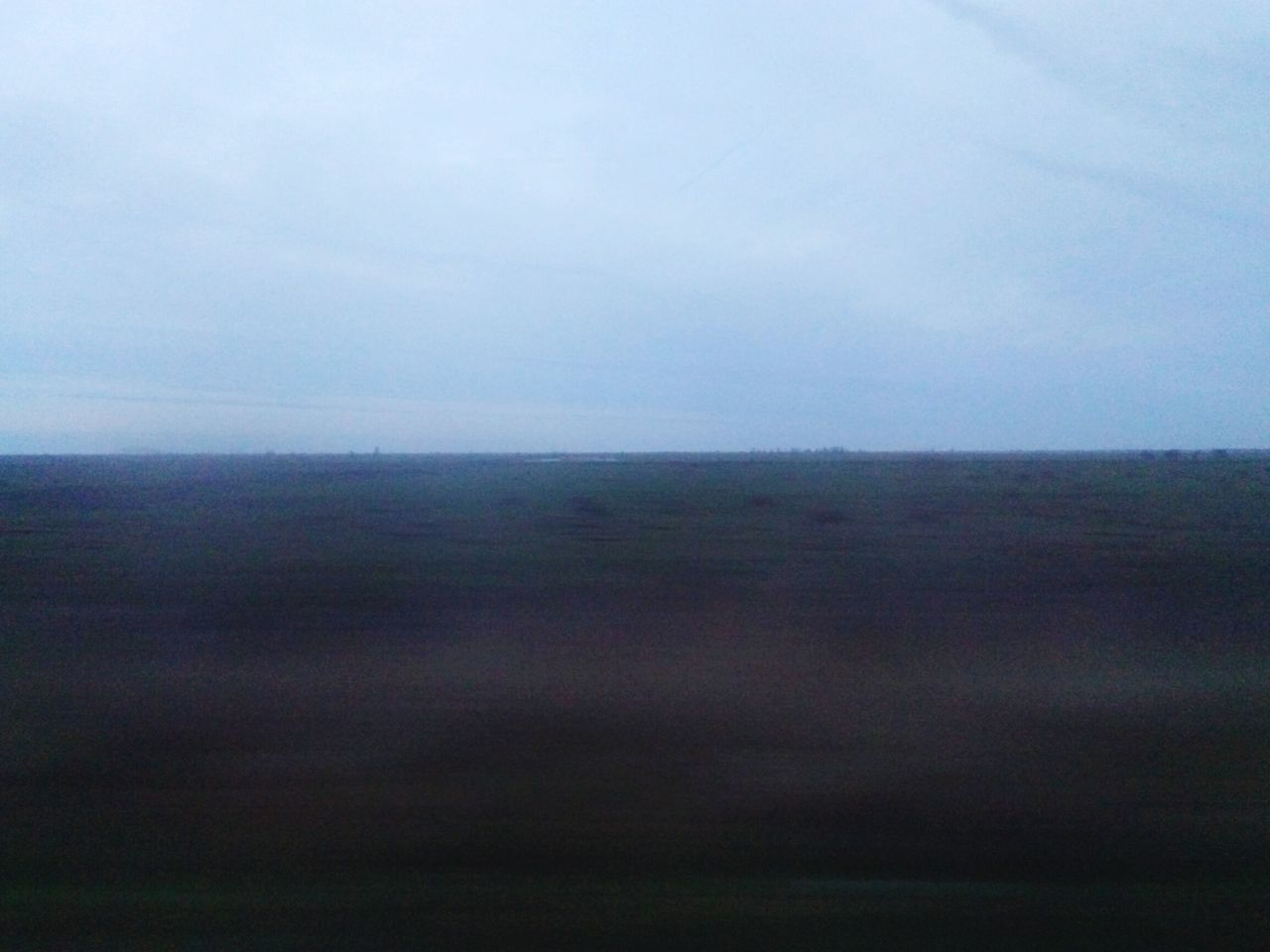 Racing through Dutch nature in train. You see the deer? Commuting Train Too Fast For Ya