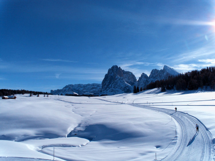 Winter on the Seiser Alm Langkofel Shades Of Winter Travel Photography Beauty In Nature Blue Cloud - Sky Cold Temperature Day Landscape Mountain Nature No People Outdoors Scenics Seiser Alm Sky Snow Tranquil Scene Tranquility Transportation Tree Winter