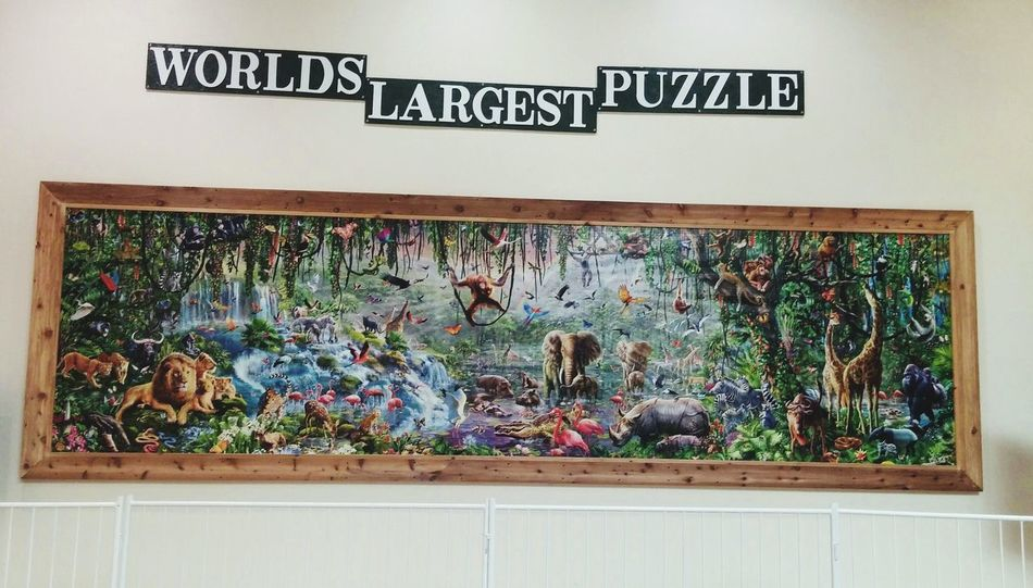 World's Largest Puzzle  Animals Nature Beautiful Scenery KINGDOM The Wild