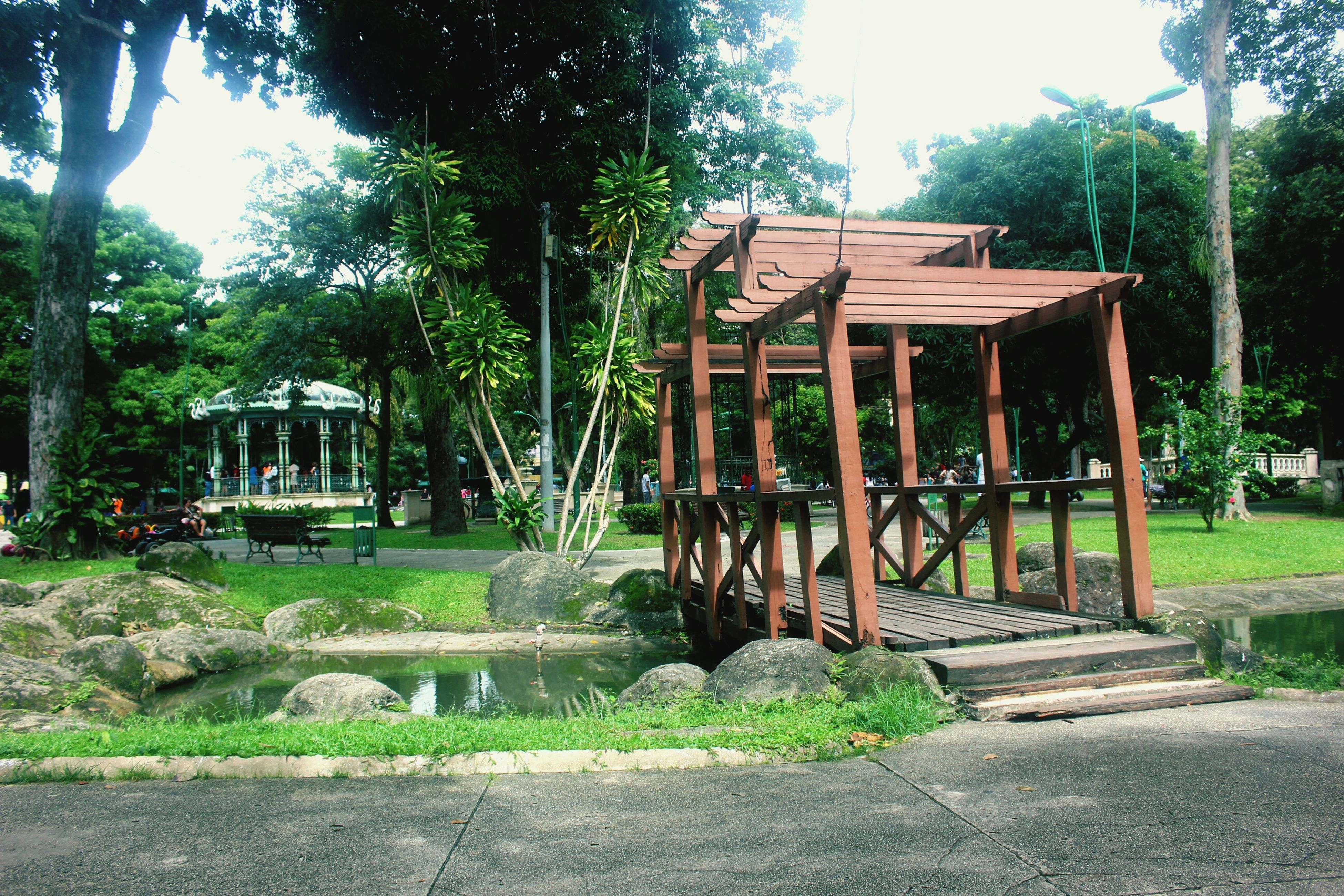 tree, park - man made space, built structure, growth, architecture, sunlight, bench, gazebo, building exterior, nature, clear sky, tranquility, grass, wood - material, park, green color, park bench, absence, shadow, day