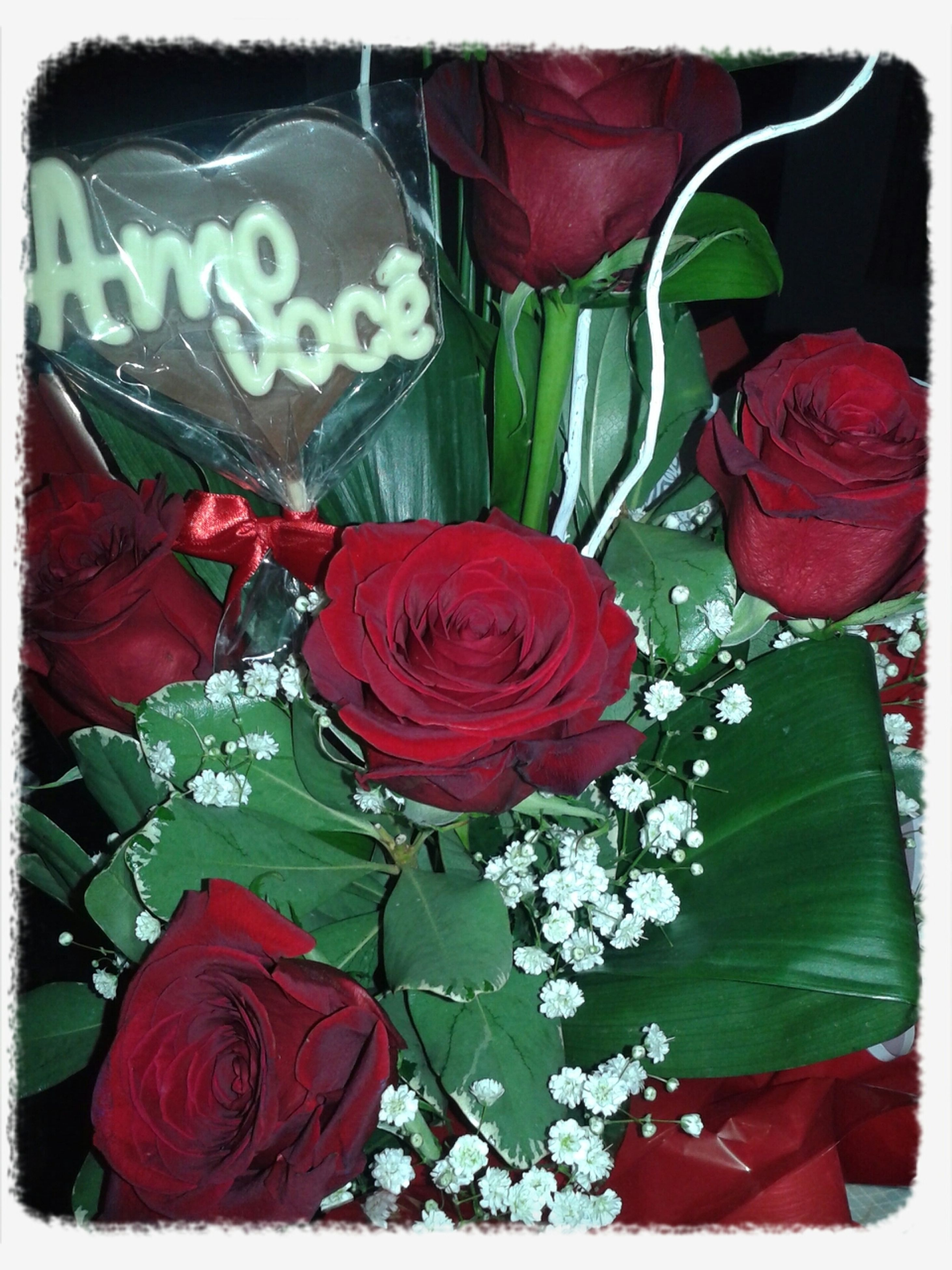 red, flower, petal, rose - flower, freshness, flower head, fragility, close-up, rose, transfer print, indoors, beauty in nature, tulip, auto post production filter, bouquet, nature, growth, plant, leaf, no people
