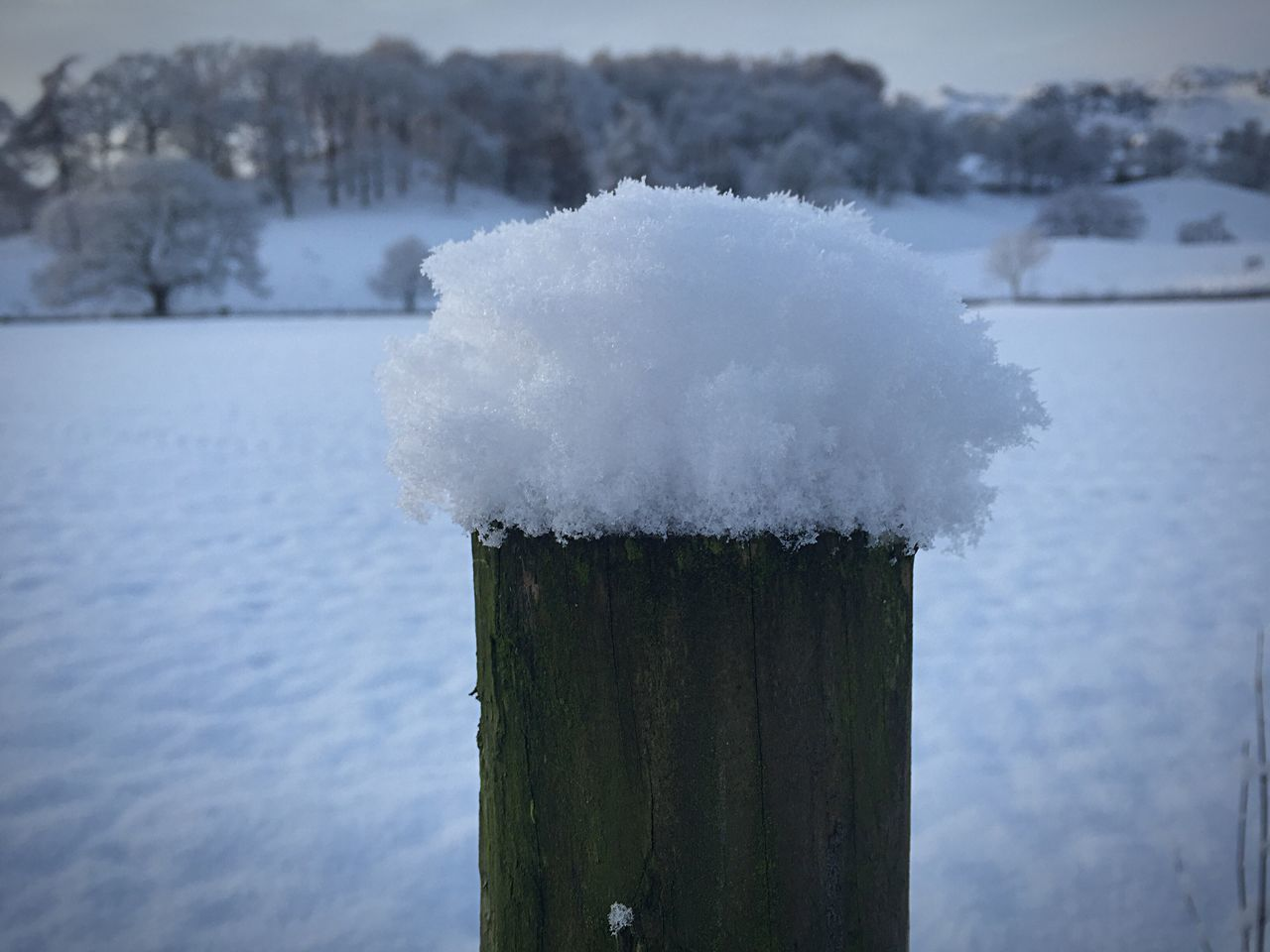 It's just the little things that make life beautiful Grassmere The Lake District  Snow Beautiful Nature