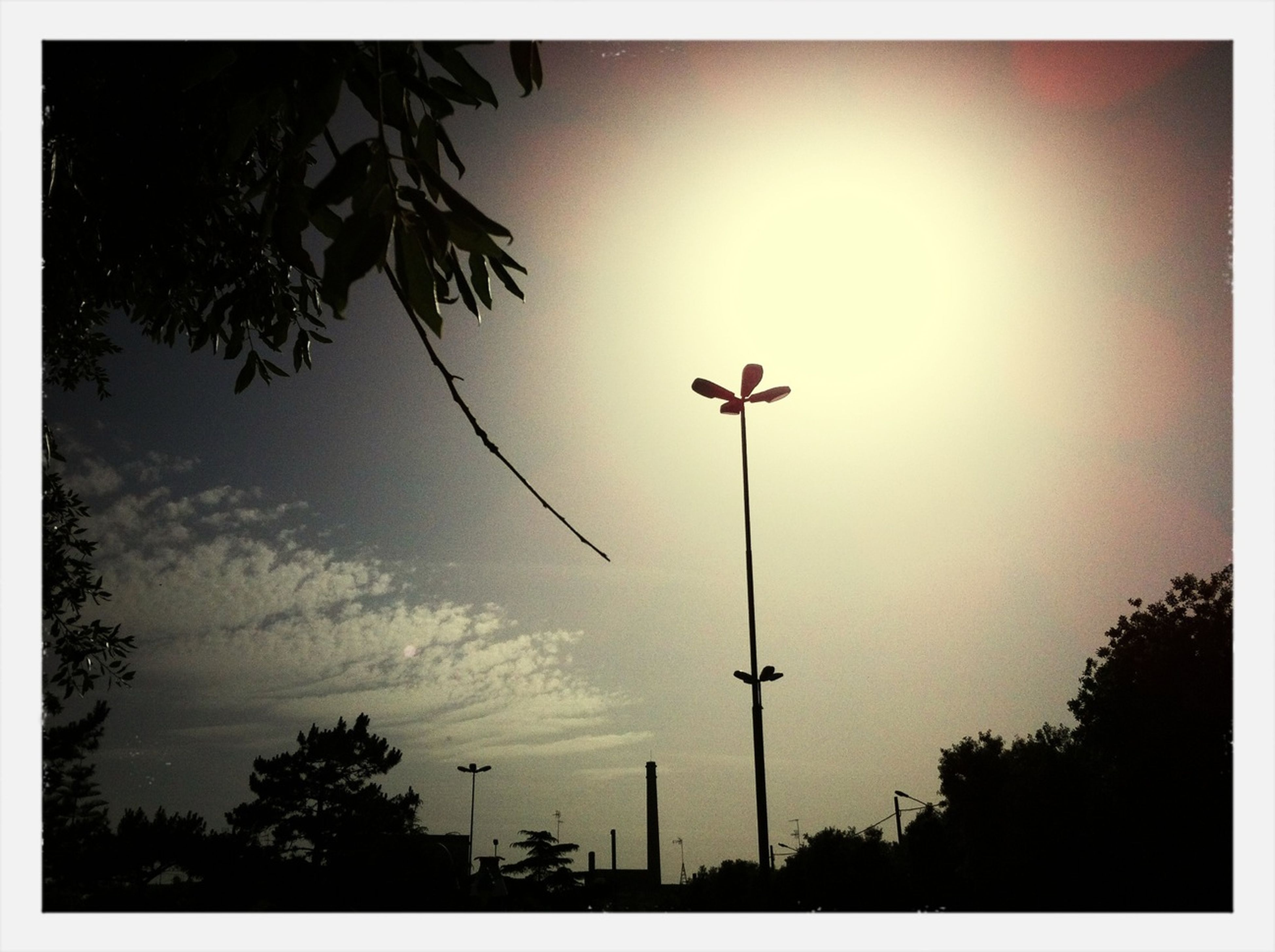 tree, low angle view, street light, silhouette, transfer print, sky, auto post production filter, lighting equipment, tranquility, nature, sunset, cloud - sky, outdoors, beauty in nature, no people, sun, dusk, pole, cloud, tranquil scene