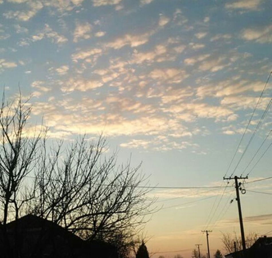 Natur Natural Naturlover Sky Picoftheday Instacool Followmee Likemee Eyem Best Shots Eyemnaturelover ☁? First Eyeem Photo