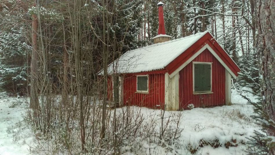 It's Cold Outside House Wooden House Forest Wooden House Kolmården Northern Europe Snow ❄ Snow Scandia Scandinavia Sweden EyeEm Gallery Winter January View