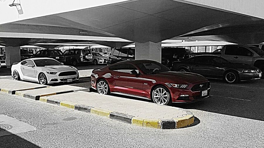 Car No People Day Mustang GT Mustang Mustang2015 Ford Mustang Kuwait My Car Ford S55o S550only