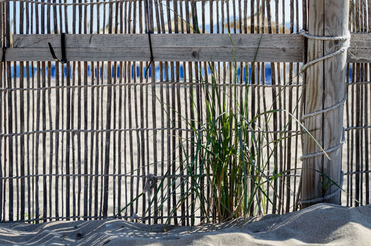 Low angle shot of withered wood fence with defocussed beach scenery in the background Backgrounds Beach Beach Life Beach Photography Beachphotography Blue Day Daytime Fence Fences Fences & Beyond First Eyeem Photo Grass Grassy Nature Nature No People Plant Plants Repetition Sand Sun Wood - Material