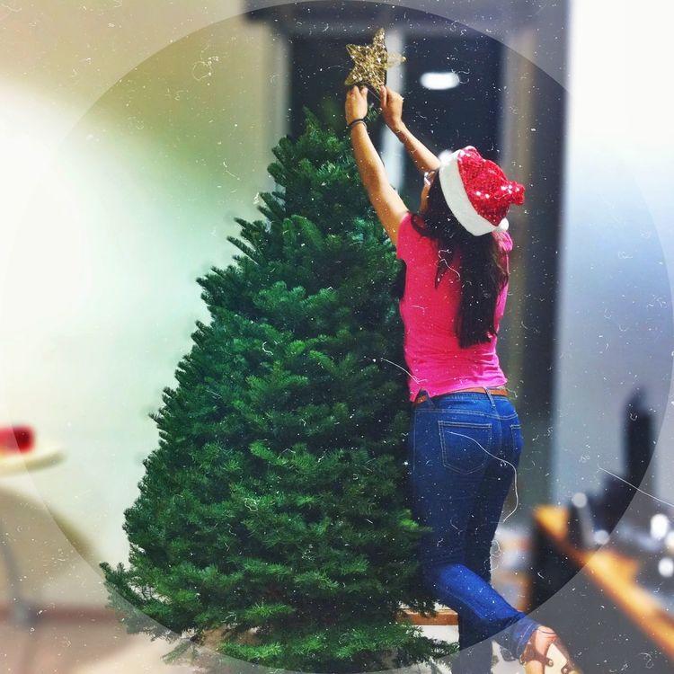 10% del arbolito de Navidad