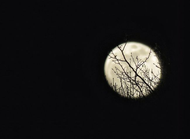 EyeEm Nature Lover Taking Photos Sky Moon Designedbynature Full Moon Check This Out Lookingup Photography Night