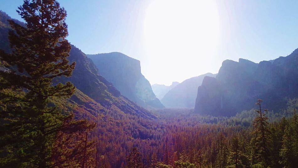 El Capitan Yosemite Valley Yosemite National Park Mariposa California United States America USA Good Morning Sunshine Great View Landscape USAtrip EyeEm Nature Lover Inspiration Point UNESCO World Heritage Site Waterfall_collection アメリカ Yosemite Viewpoint Sunlight Good Morning! ヨセミテ国立公園 カリフォルニア 世界遺産