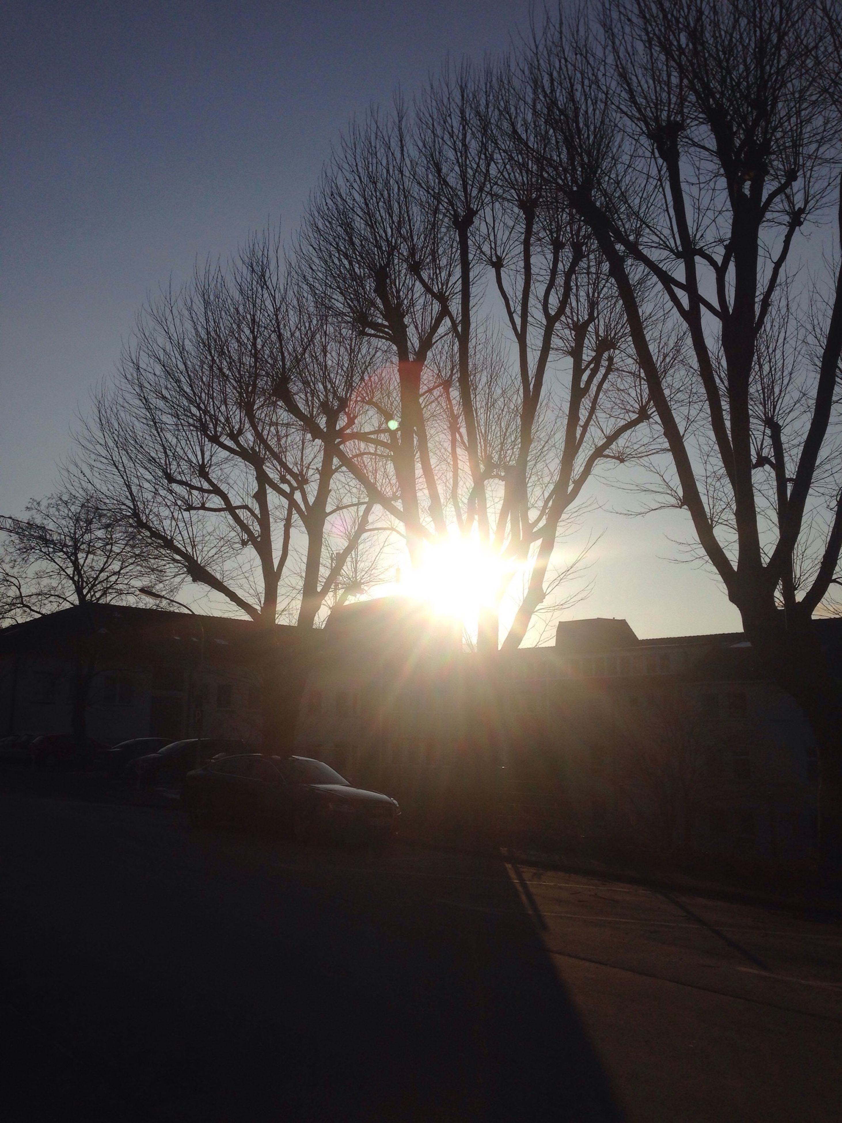 sun, bare tree, built structure, sunlight, tree, building exterior, sunbeam, silhouette, architecture, lens flare, sunset, sky, branch, clear sky, nature, outdoors, low angle view, no people, tranquility, house