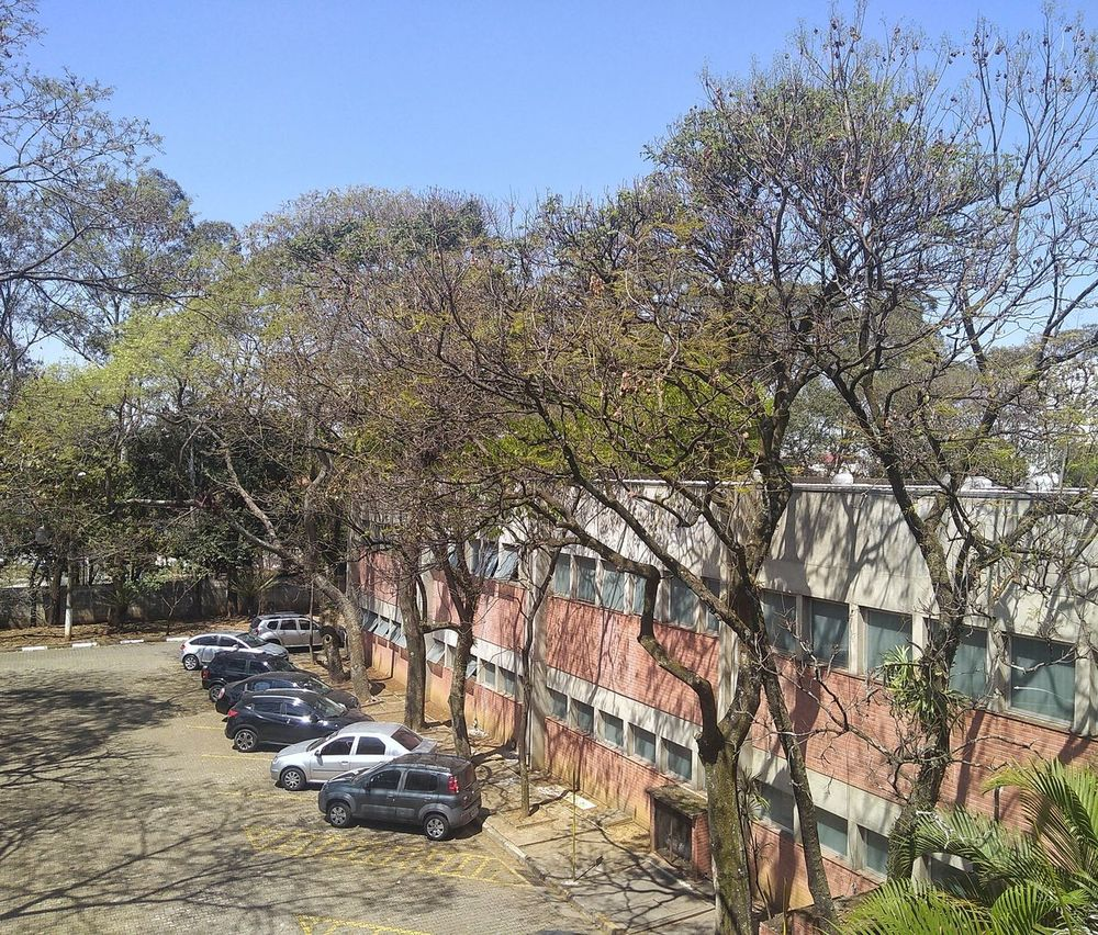 Parking Day Tree Outdoors Sunlight No People Nature Sky Park Parking Trees And Sky Building Exterior Building And Nature