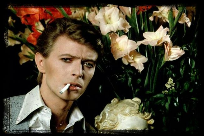 Hi! Check This Out David Bowie Young. .Time Of Ziggy, White Il Which I Follow Since I'm Young : Love Thé Guy