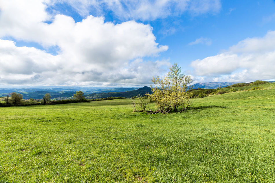 Beauty In Nature Cloud - Sky Day Field Grass Green Color Growth Landscape Mountain Nature No People Outdoors Scenics Sky Tranquil Scene Tranquility Tree