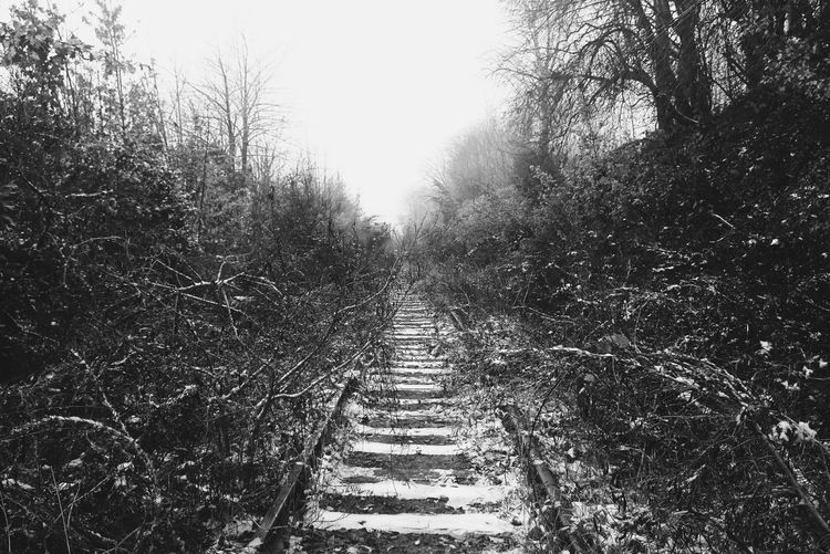 No People Outdoors Monochrome Black And White Blackandwhite Bnw Symmetry Railroad Ties Wrinkles Of The City  Urban Landscape Urban Nature North Portland Portland, OR Foggy Misty Railroad Track Vanishing Point