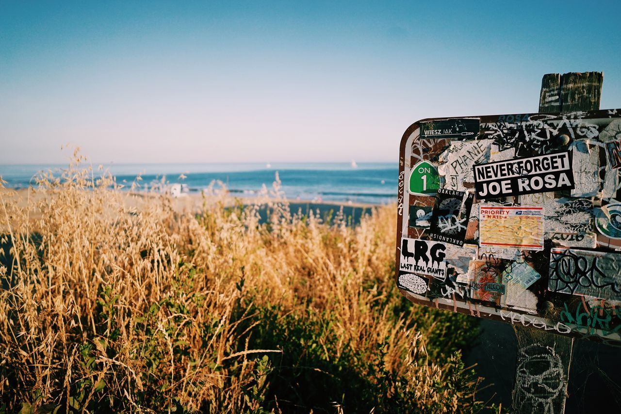 Santa Cruz, CA // Text Sea Horizon Over Water Nature Water Beach Scenics Day Beauty In Nature Communication Clear Sky Grass Outdoors Sky Tranquility Travel Destinations Growth Landscape No People Close-up