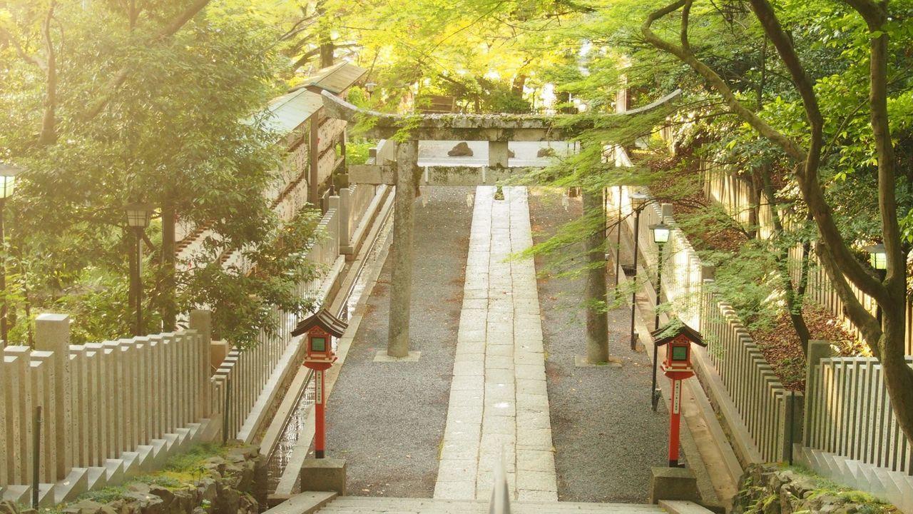 Photo Japan Shrine Morning