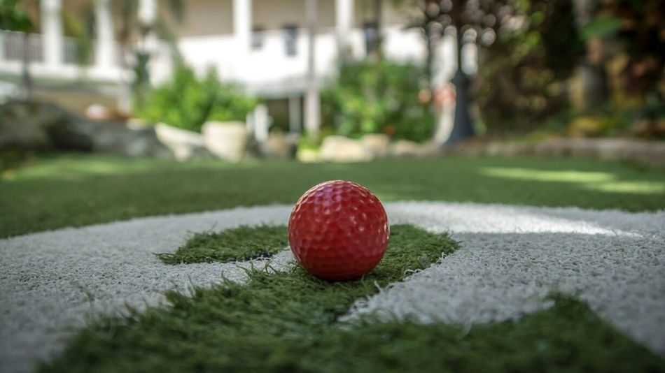 Beautiful stock photos of golf, Built Structure, Day, Front Or Back Yard, Golf Ball