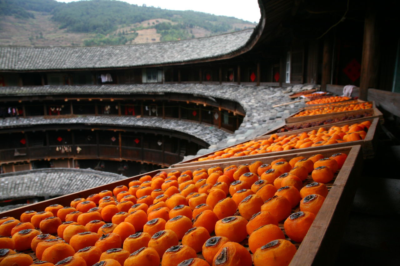 China Food China Fruits Fruit Fruit Photography Fruits Fruits ♡ Fruity Fujian Fujian Province Fujian, China Tulou Visual Feast