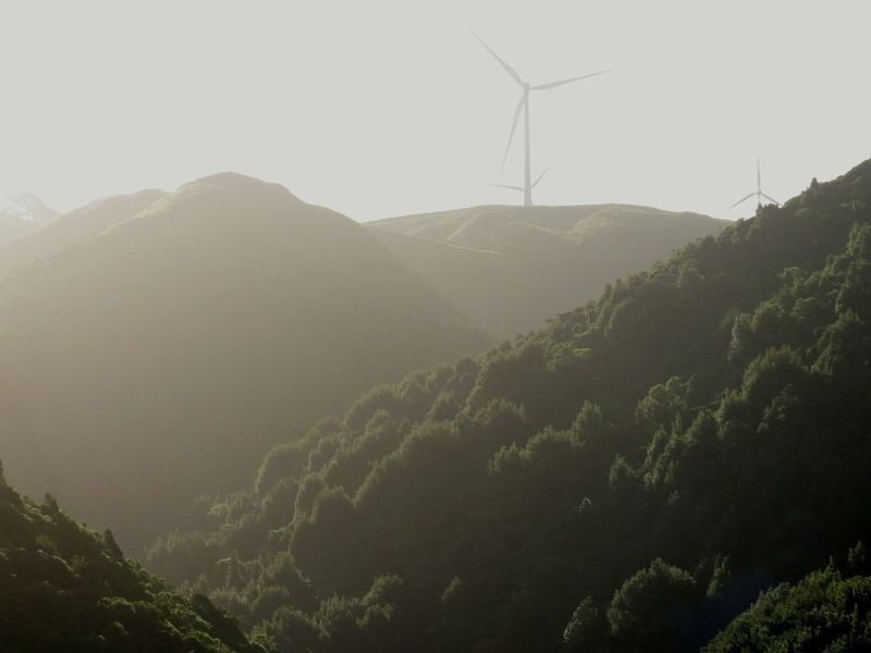 Landscape Nature Tranquility Mountain Outdoors Environmental Conservation Beauty In Nature Fog Rural Scene Wind Turbine Agriculture No People Day Scenics Alternative Energy Renewable Energy Sky Manawatugorge New Zealand Surreal Exploration Beauty In Nature Scenic View Native Bush Green Live For The Story The Great Outdoors - 2017 EyeEm Awards