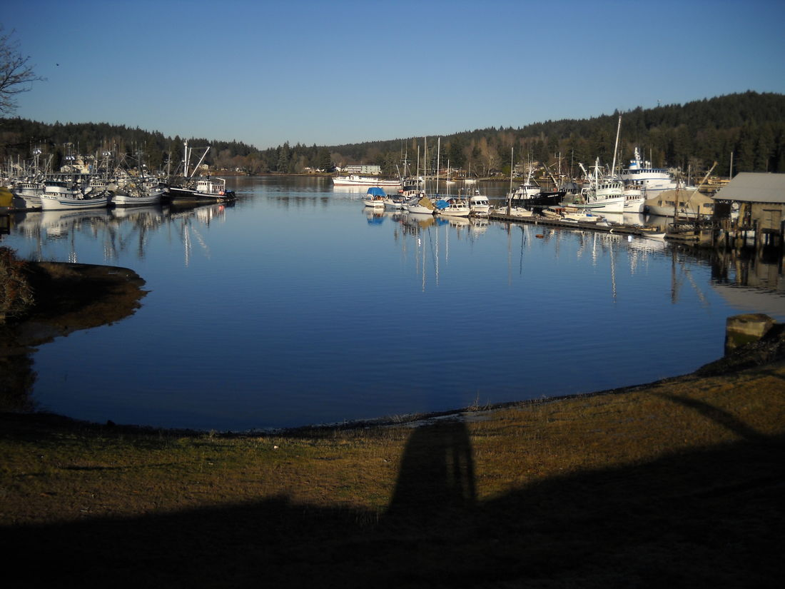 Blue Water Boats Gig Harbor Harbor Perfect SAFE HAVEN Water Water Reflections