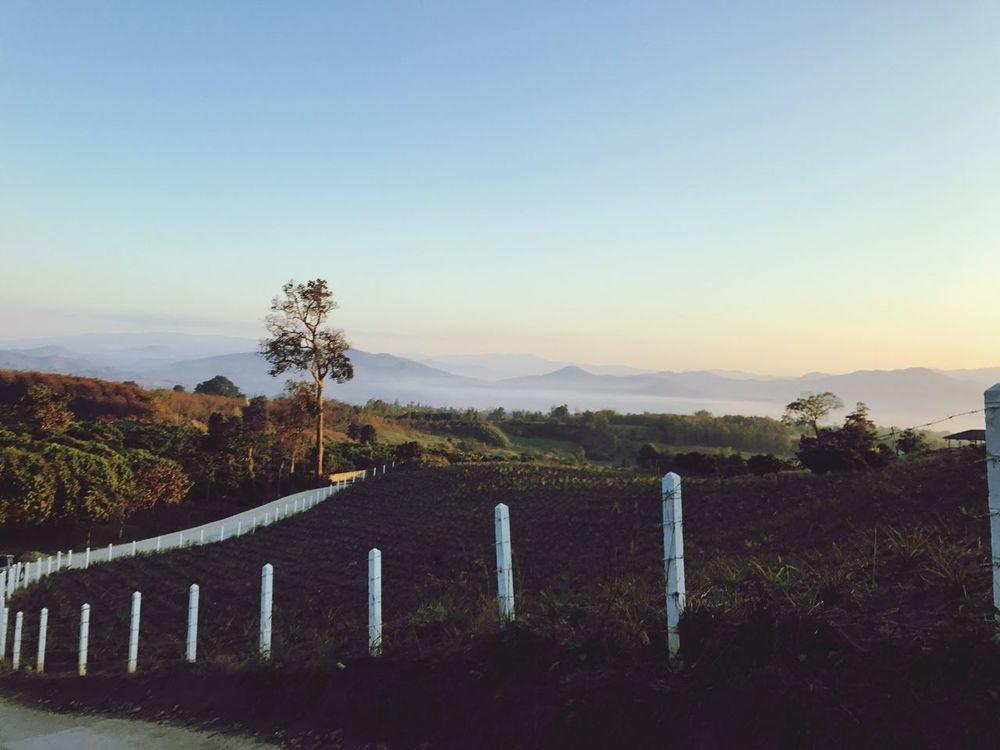 Ontheway Pai Maehongson Thailand Lanscape Mountain View