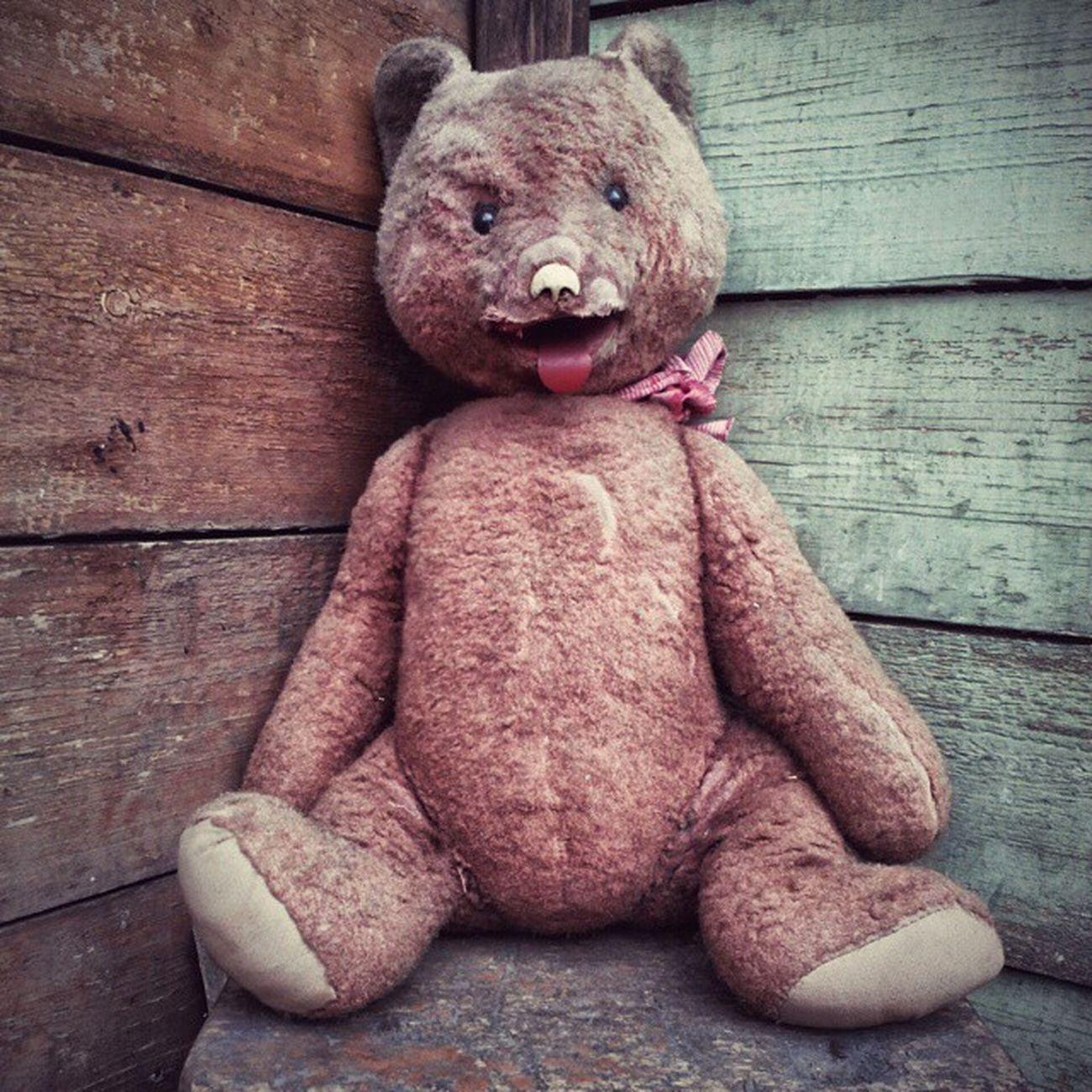 омск сибирь старыйдом старый медведь фактура доска Omsk Siberia Oldhouse Oldbear Teddybear Facture Plank Instaomsk15