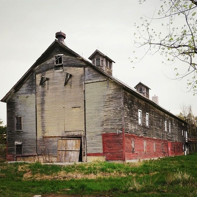 This barn, despite the fact that I pass it multiple times a day, never ceases to fascinate me. If only old barns could talk. Cloverdale Oldbarn Vt Vtphoto vermont vermontbyvermonters greenmountainstate underhillvt vsco vscogood vscopictures vscobuilding igvermont ignewengland igusa ig_americas ig_treasures ig_great_pics nothingisordinary thedayphoto barn evening