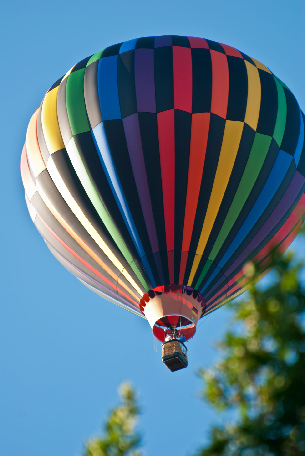 Hot air baloon rising to the sky. Above Adventure Ballooning Festival Baloon Baloon Festival Balooning Blue Clear Sky Colorful Coloured Day Flying Hot Air Balloon Hot-air Balloon Hot-air Balloon Ride In The Air Looking Up Multi Colored Outdoors Sky Summer Transportation Travel Up Yellow