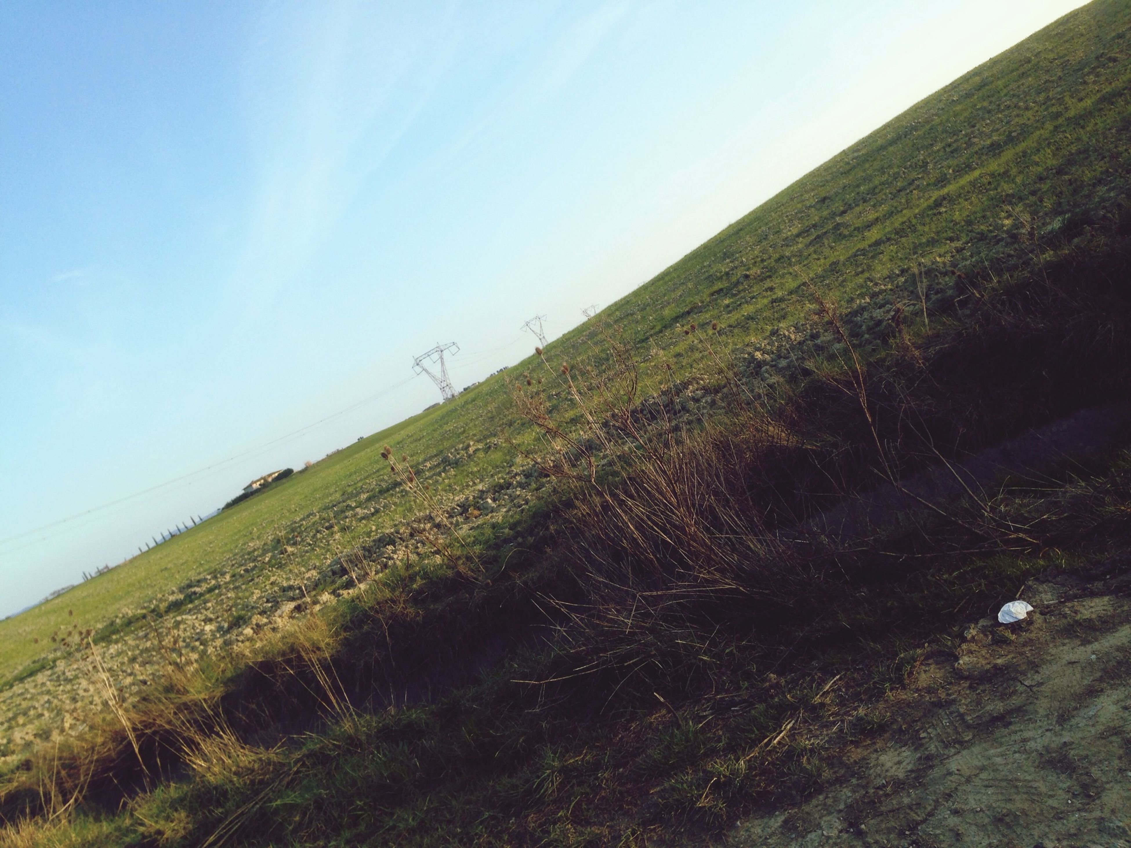 tranquil scene, tranquility, sea, scenics, grass, water, horizon over water, sky, landscape, nature, beauty in nature, blue, field, non-urban scene, clear sky, remote, beach, day, idyllic, green color