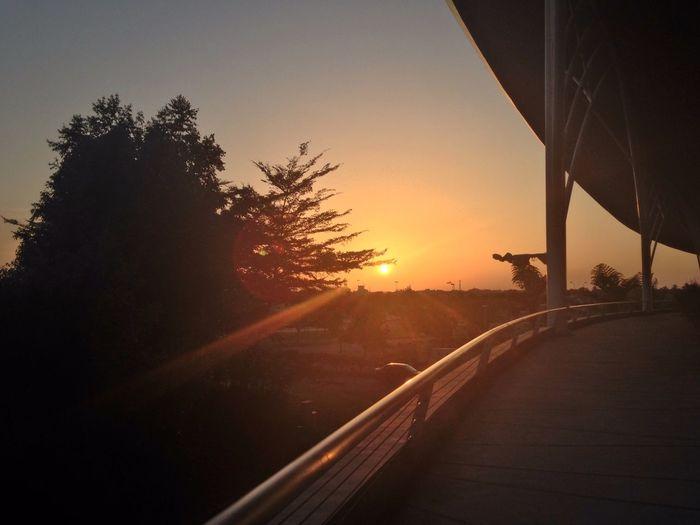 Sunset Sunset Silhouettes Kuching