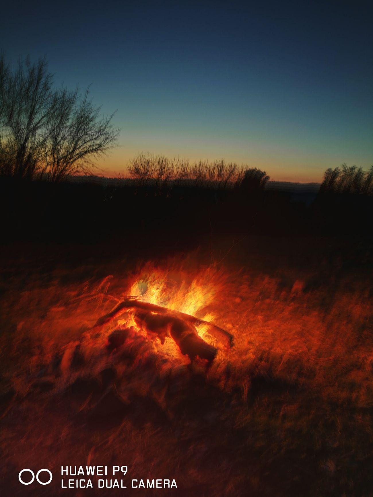Fireflies & Empty Skies EyeEmNewHere