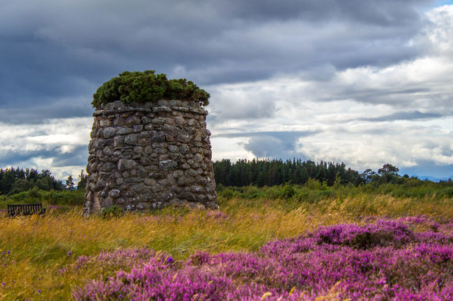 Beauty In Nature Blooming Cloud Cloud - Sky Cloudy Culloden Culloden Battlefield Day Field Flower Freshness Growth Idyllic Landscape Majestic Nature Non-urban Scene Outdoors Plant Scenics Scotland Sky Springtime Tranquil Scene Tranquility First Eyeem Photo