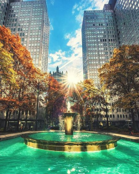 Water Fountain Sunlight Architecture Sky Sunshine Outdoors EyeEmNewHere Perspective Photography Leaves Autumn Autumn Leaves Eyeem Market EyeEm Nature Lover Pittsburgh Pittsburgh Pennsylvania Pittsburgh Nature PPG Building Downtown Pittsburgh Changing Leaves Changing Colors Daylight Photography