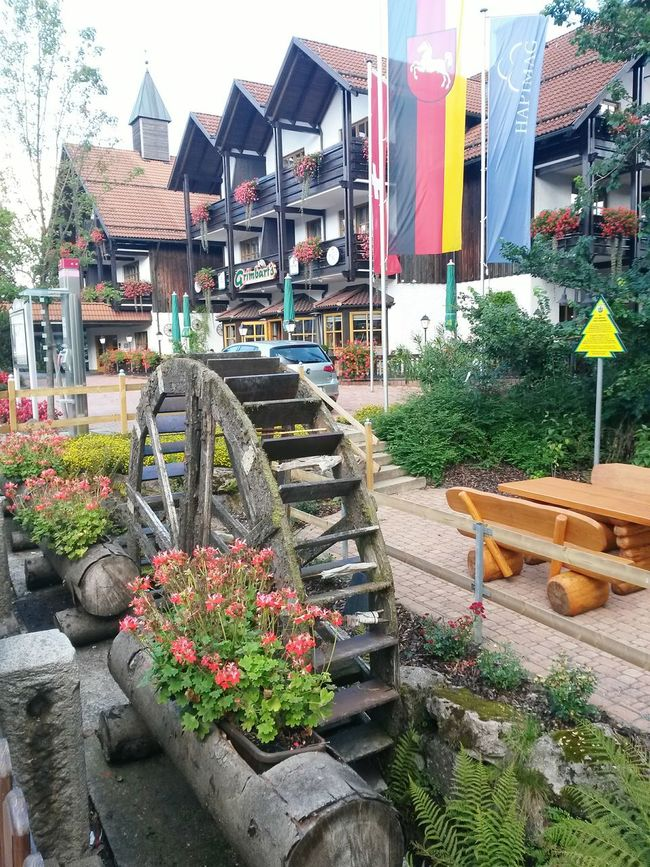 Braunlage im Harz Architecture Building Exterior Flower House Built Structure Multi Colored Residential Structure Plant Outdoors Freshness Fragility Pedestrian Walkway City In Bloom In A Row Braunlage Harz Mountains, Germany Harz Im Sommer Germany🇩🇪 Potted Plant Footpath Growth Decoration Day EyeEmBestPics