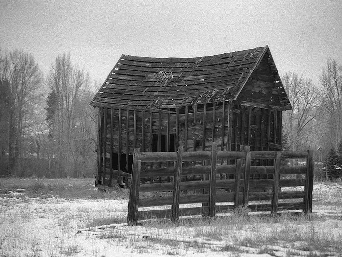 Old Barn Winthrop, WA Methow Valley Black And White Black & White Snow Farm Dilapidated Weathered The Week On EyeEm The Architect - 2017 EyeEm Awards Black And White Friday Shades Of Winter