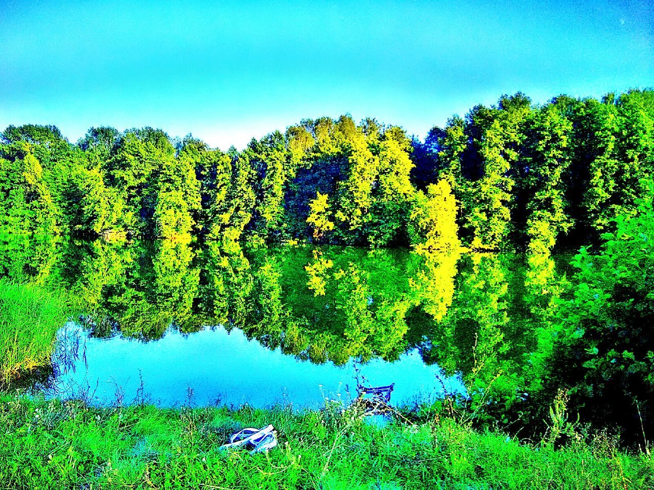 Lake Water Tree Blue Green Color Beauty In Nature Reflection Majestic Themagicmission Clear Sky Green Nature Vibrant Color Non-urban Scene Day EyeEm Best Edits Eyeem New Talent New Talent This Week Eyeem Collection Eyeem Photography EyeEm Best Shots Battle Of The Cities Selective Focus Lifestyles My Favorite Place