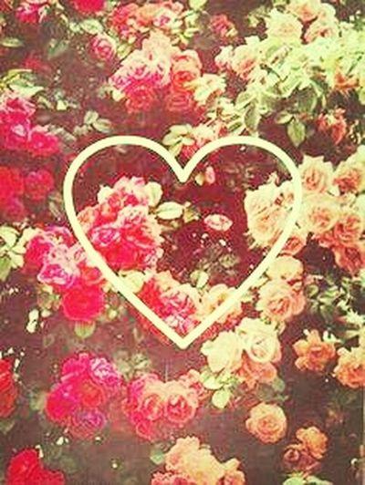 *-----* @Friends @Lovelyy @Old @;3